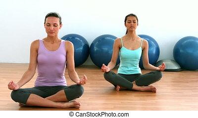 Fit brunettes doing yoga in studio