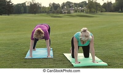 Fit ladies standing in donward facing dog pose - Beautiful...