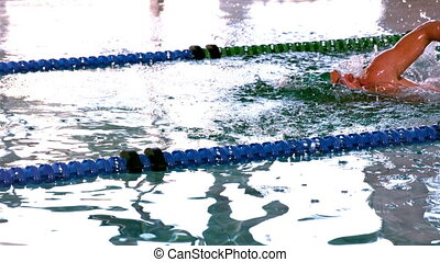 Fit swimmer doing the front stroke - Fit swimmer doing the...