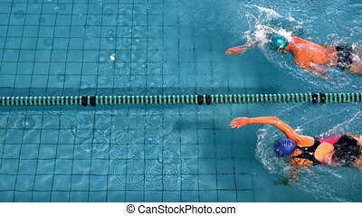 Fit swimmers racing in the swimming