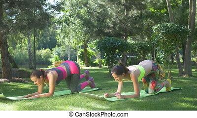 Fit women doing raised leg plank exercises ourtdoors -...
