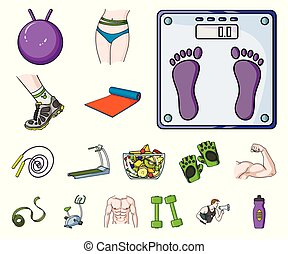 Fitness and attributes cartoon icons in set collection for design. Fitness equipment vector symbol stock web illustration.