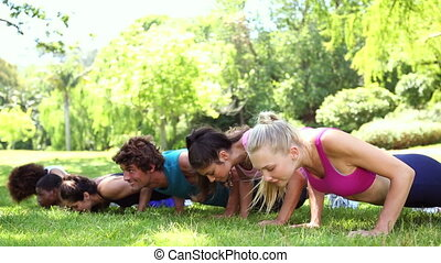 Fitness class doing push ups in the park on a sunny day