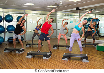 Fitness class doing step aerobics at the gym