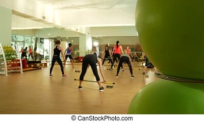 fitness class in the gym. women are engaged in power...