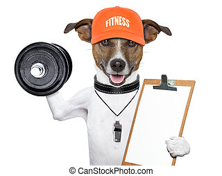 personal trainer dog with dumbbells and a clipboard