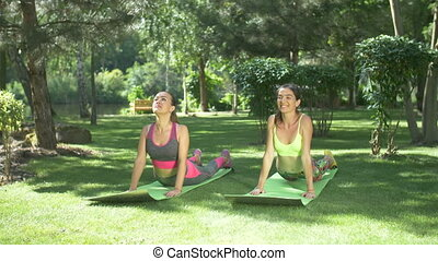 Fitness females working out on yoga mats in nature