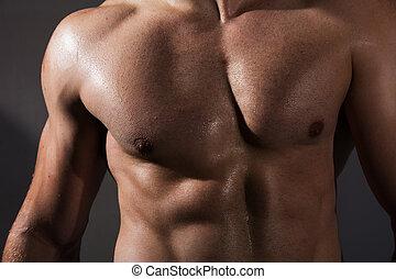 fitness, gespierd, man, torso