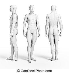 Fitness guys - 3d rendered illustration of some fitness guys