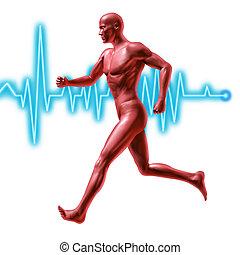 fitness, mit, übung