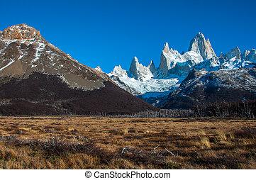 fitz, 道, roy, 風景, 南, アルゼンチン