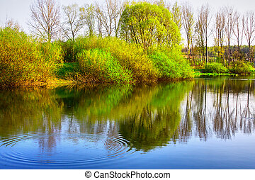 fiume, alberi riflessione