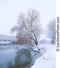 fiume, albero, banca, nevicata
