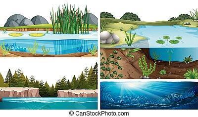 fiume, ecosistemi, acquatico, lago, stagno