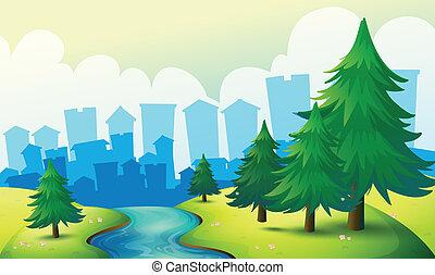 fiume, fluente, alberi pino, collina