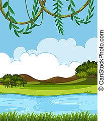 fiume, natura, vista