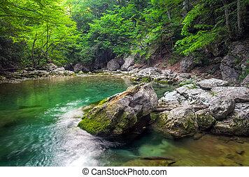 fiume, profondo, in, montagna, a, summer., acqua, flusso, a, forest., composizione, di, natura