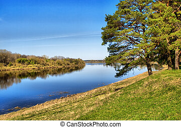 fiume verde, albero, costa