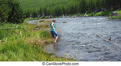 fiume yellowstone, guadare, gibbone