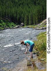fiume yellowstone, visitatore, gibbone