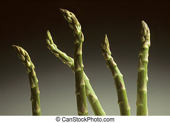 Five Asparagus spears against a gradated background