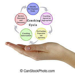 Five components of Coaching Cycle