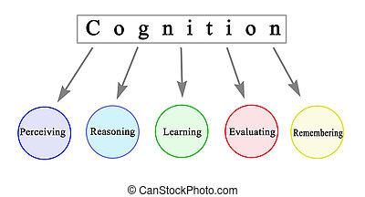 Five Components of Cognition