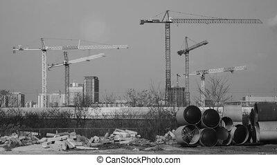 Five cranes working. Timelapse.