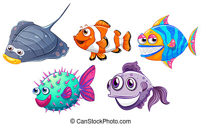 Five different fishes