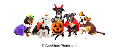 Five Dogs Wearing Halloween Costumes Banner - Five funny...