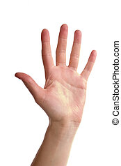 Five Fingers - An adult female hand holding up five fingers...