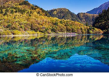Five Flower Lake is lake in Jiuzhaigou