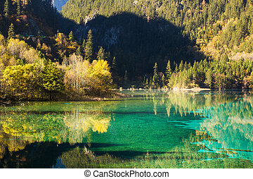 Five Flower Lake is lake in Jiuzhaigou
