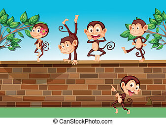 Five monkeys playing at the fence