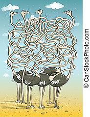 Five Ostriches Maze Game for children. Hand drawn...
