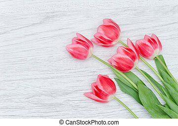 Five pink tulips on a light wooden background. Top view. Space for text