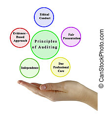 Five Principles of Auditing