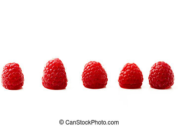 five raspberries in a row isolated on white background