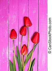 Five red tulips on a pink wooden surface
