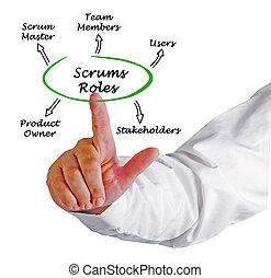 Five Scrums Roles