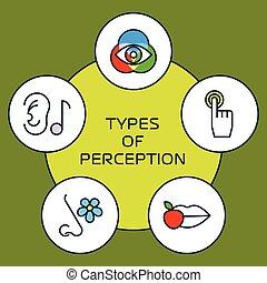 Five senses concept - Five senses with human organs, five...