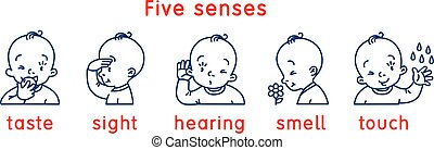Five senses icon. Touch, taste hearing sight smell