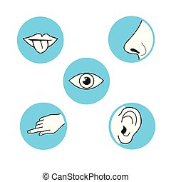 Five senses  methods of perception, taste sight touch smell sound vector icon on azure blue circle simple black outline and white illustration mouth with tongue, ear, eye, hand finger, nose