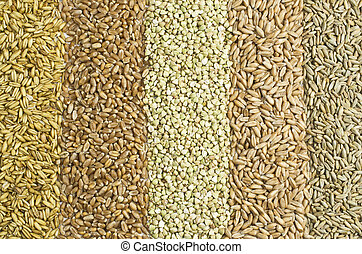 Five sorts of grain ion rows