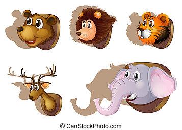 Five stuffed heads of animals