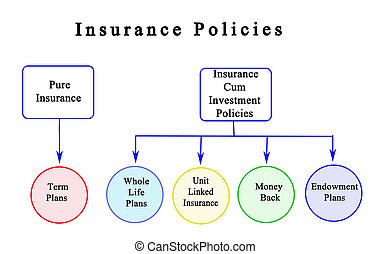 Five types of Insurance Policies