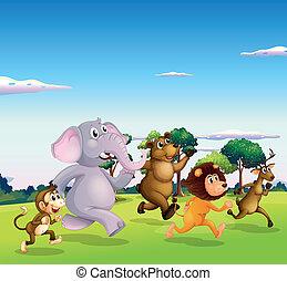 Illustration of the five wild animals running