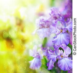 fjäder, abstrakt, blomma, bakgrund