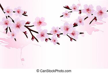 fjäder, bakgrund, av, a, blomstrande, träd filial, med, fjäder, flowers., vektor, illustration.