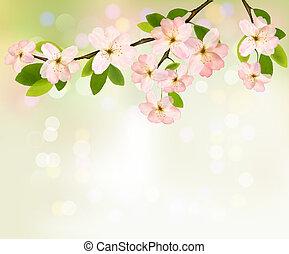 fjäder, bakgrund, med, blomstrande, träd, brunch, med,...